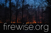 Forest Fire Safety Information